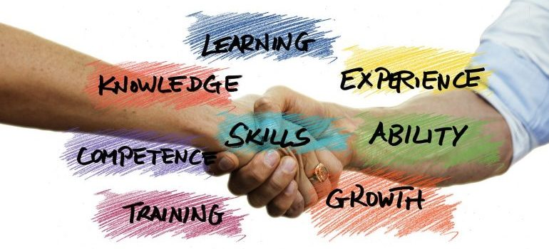 Words: skills, learning, knowledge, experience, competence, training and growth